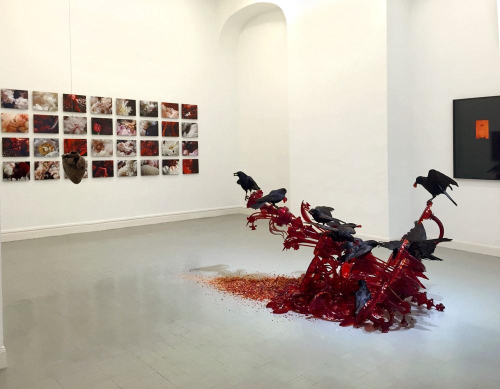 Galería Vanguardia